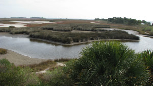 Salt marsh with water channels and low vegetation stretching to distance