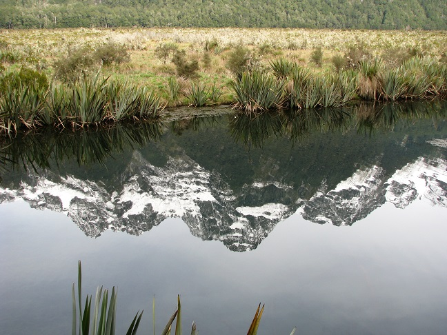 Reflection of snowcapped mountains in small pond in New Zealand.