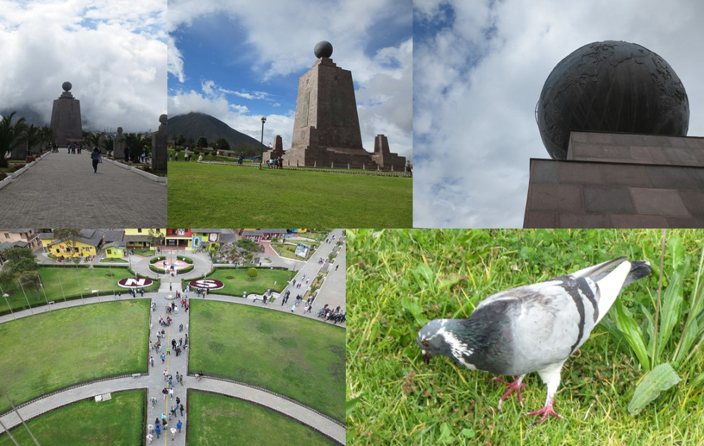 Montage of 5 shots of equator monument and a pigeon.