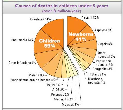 Chart of causes of death before age 5.