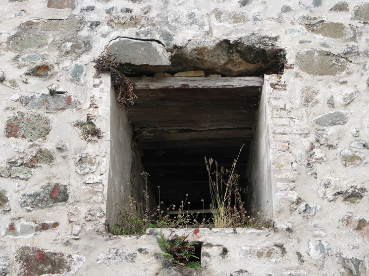 Weeds growing in window of old stone fort.