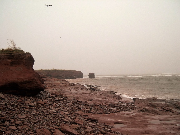 Red sandstone along the coast on a stormy day.