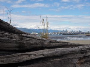 View of city from Spanish Bank; driftwood in foreground