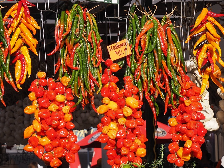 Variety of hot peppers hanging in outdoor stall.