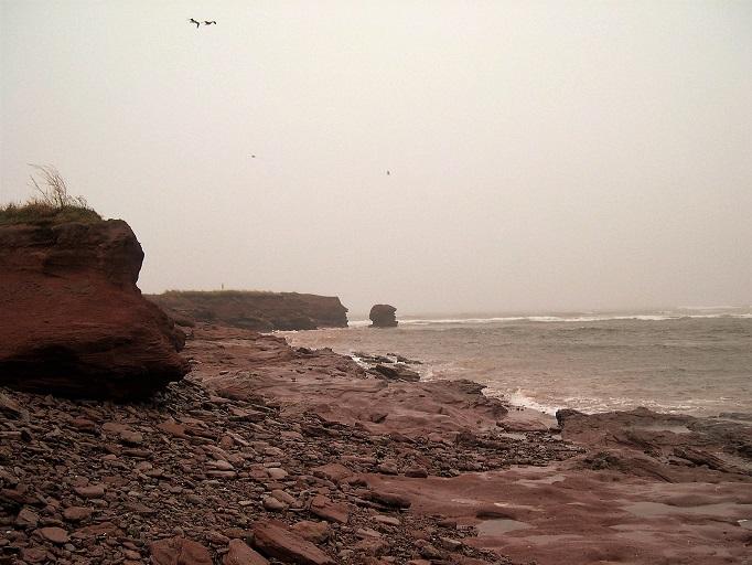 National Treasure #8: PEI Red Soil