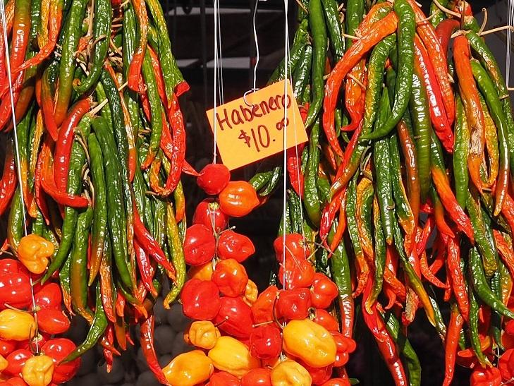 Hot Peppers, Ottawa