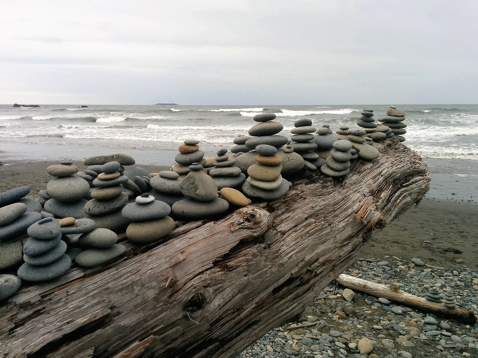 Stones on Driftwood, Olympic Peninsula, WA