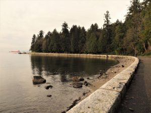 Seawall curving to the left, framing sea and forest. and