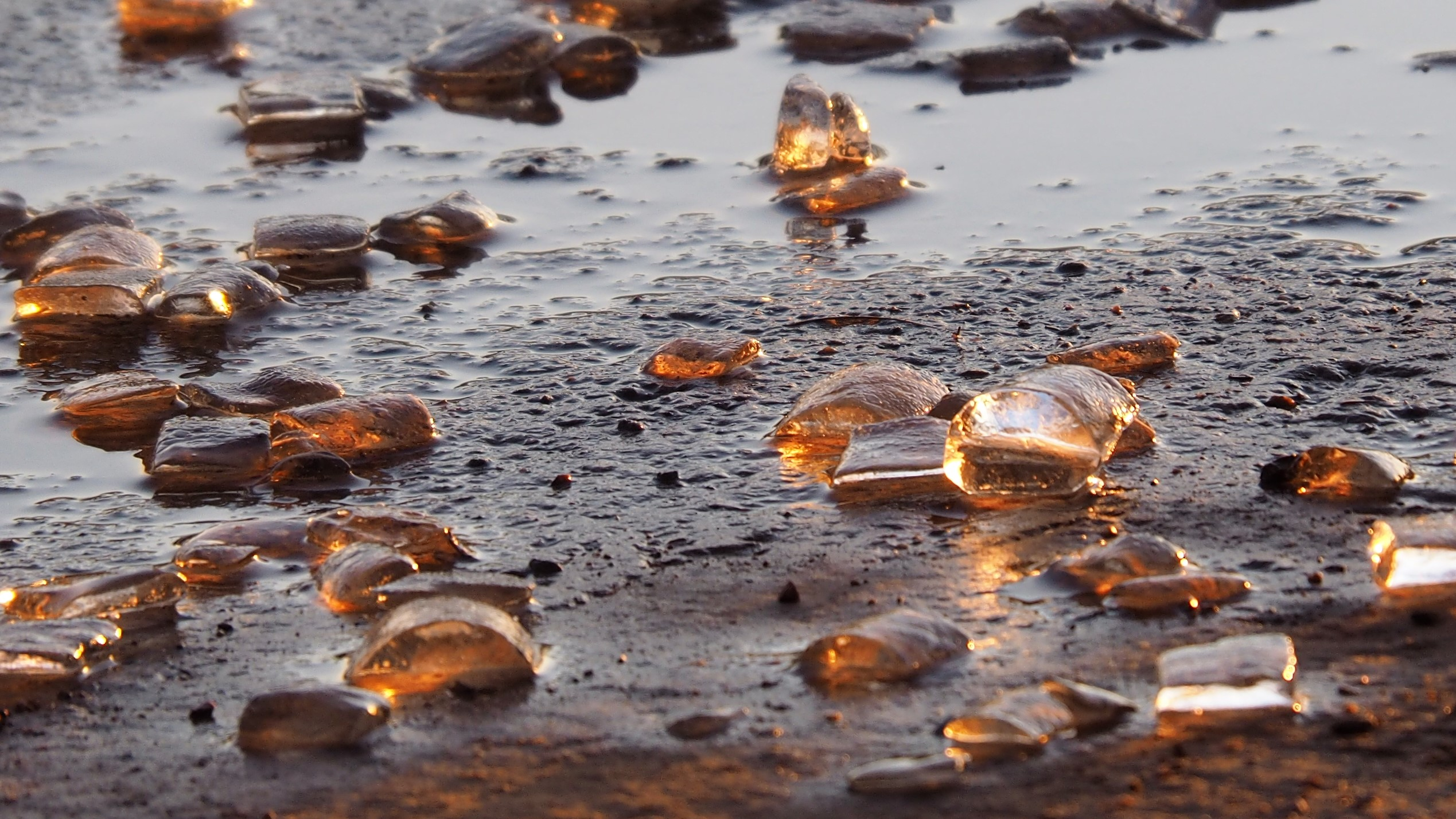 Ice cubes melting on ground and backlit by late-afternoon light.