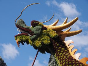 Dragon in floral or horticultural art.