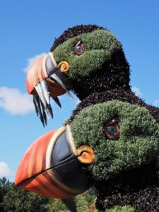 Two puffins in floral or horticultural art.
