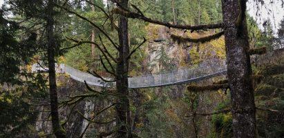 Suspension Bridge, Elk Falls BC