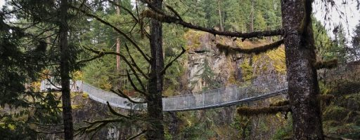 Suspension Bridge, Elk Falls BC