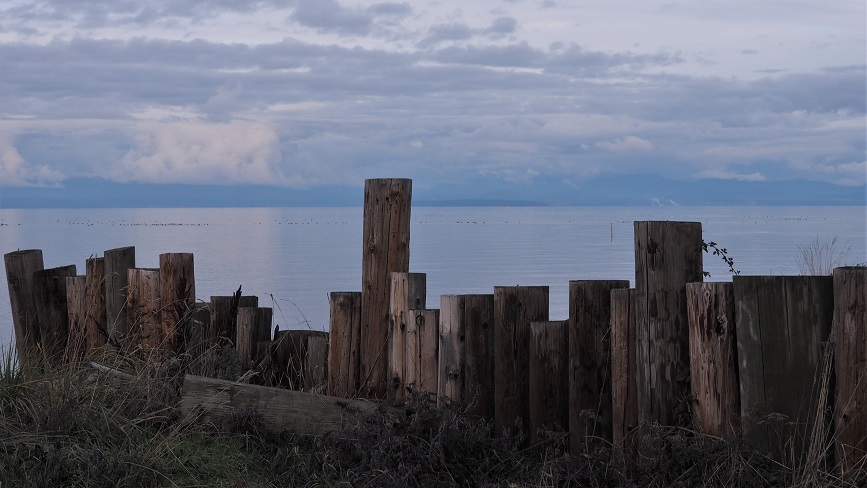 Kye Bay vista with wooden pilings in foreground and mainland in background.