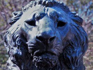 Close-up of lion head's in bronze sculpture