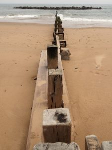 View of wooden breakwater from just above it