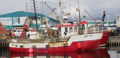 Boats, Reykjavik