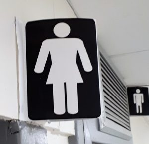Big-shouldered icon for female toilet leaves me wondering