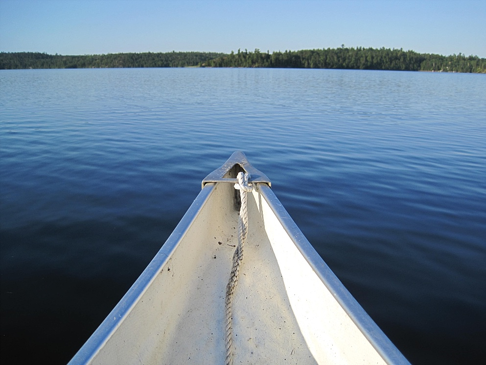 View of shoreline of Lake of the Woods from canoe
