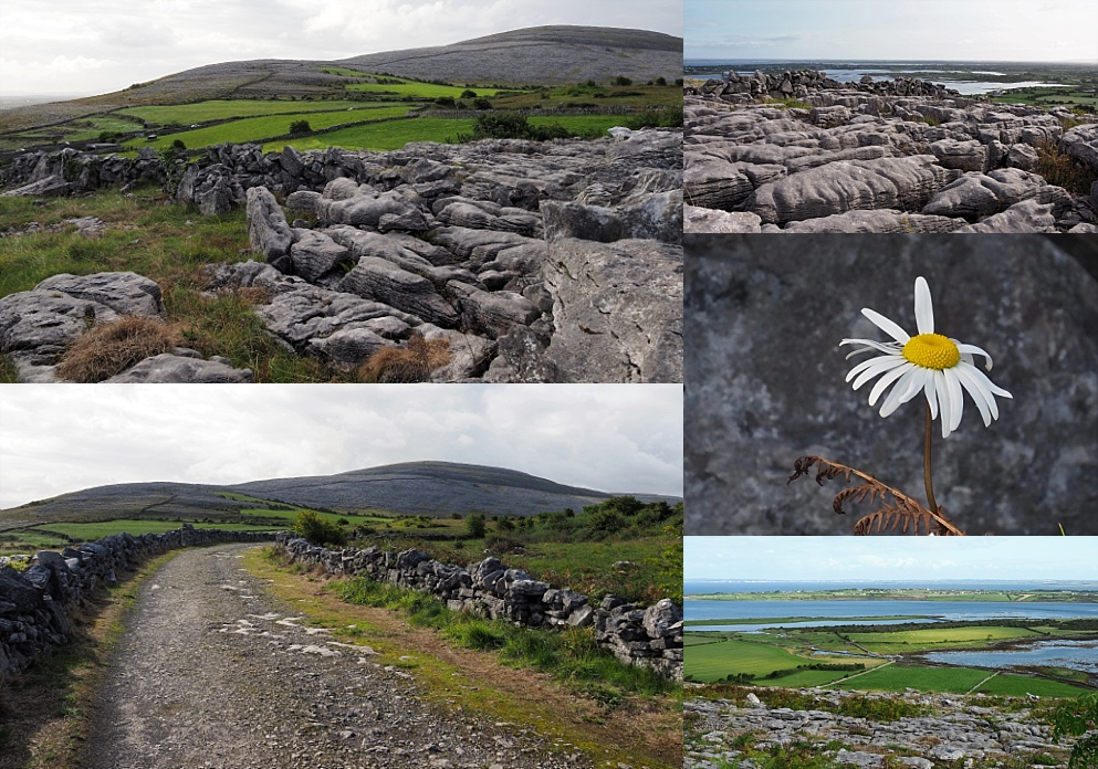 6-photo collage on landscape shots of the Burren