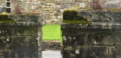 Stone Pillar Face, Lismore