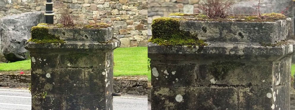 Serendipitous face on stone pillar at Lismore Castle