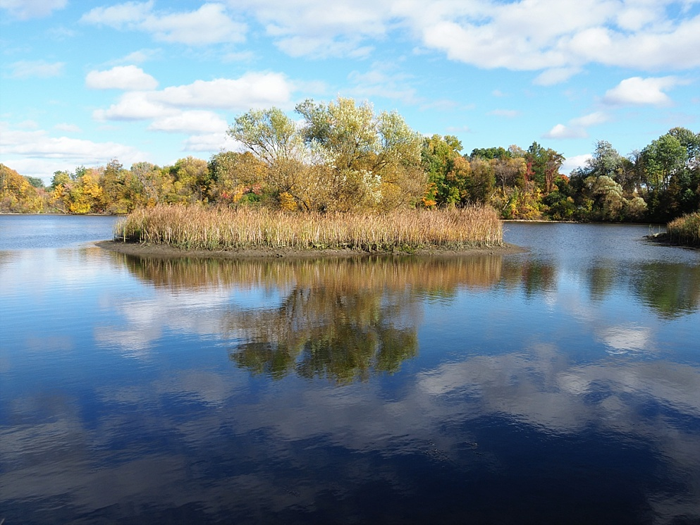Islet reflected in river in autumn