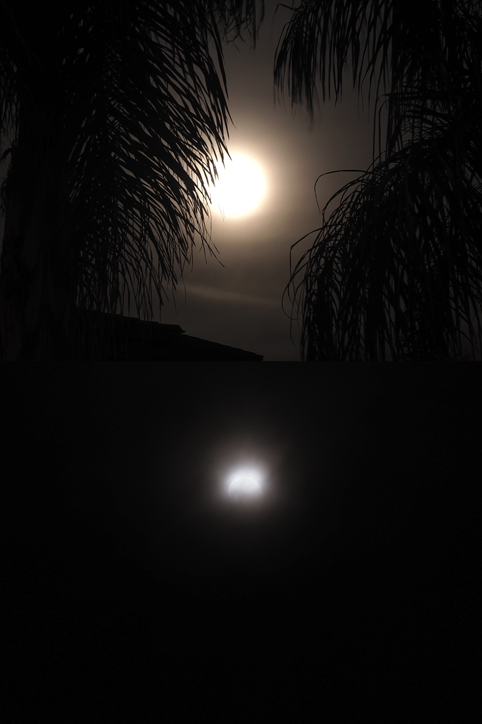 2-photo collage of full moon, and partial eclipse.