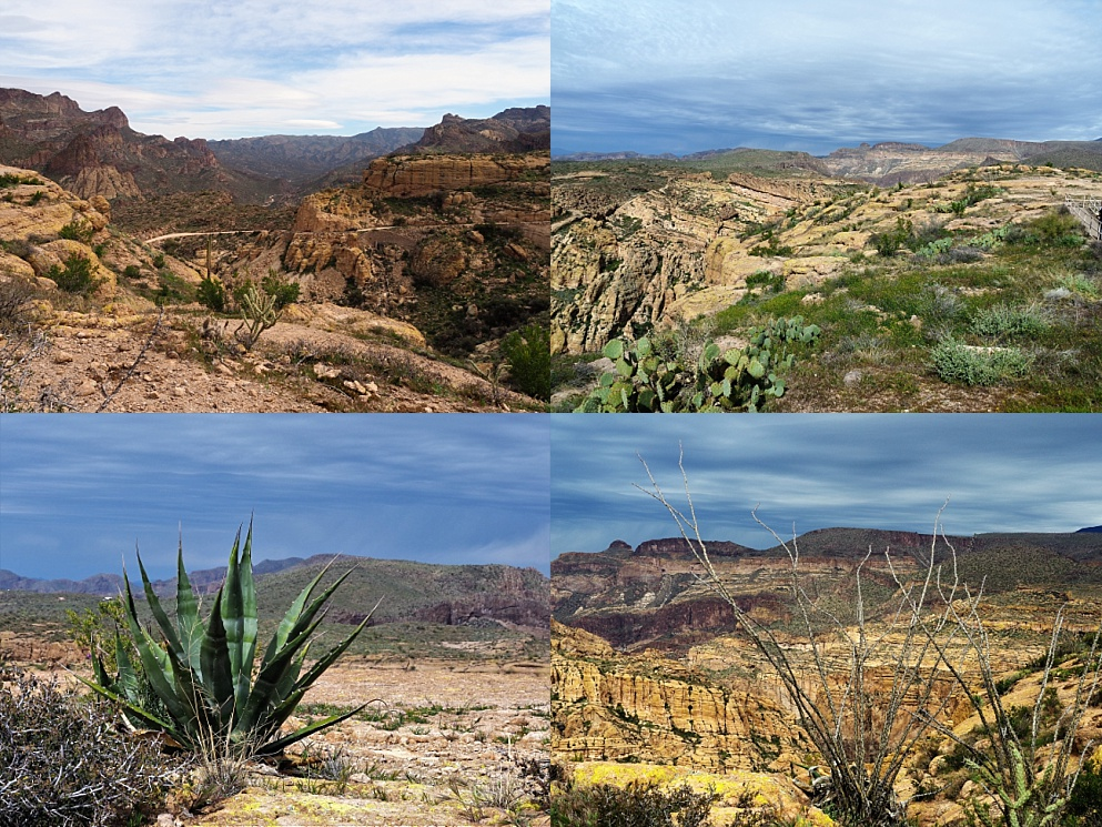 4-photo collage of Fish Creek Lookout