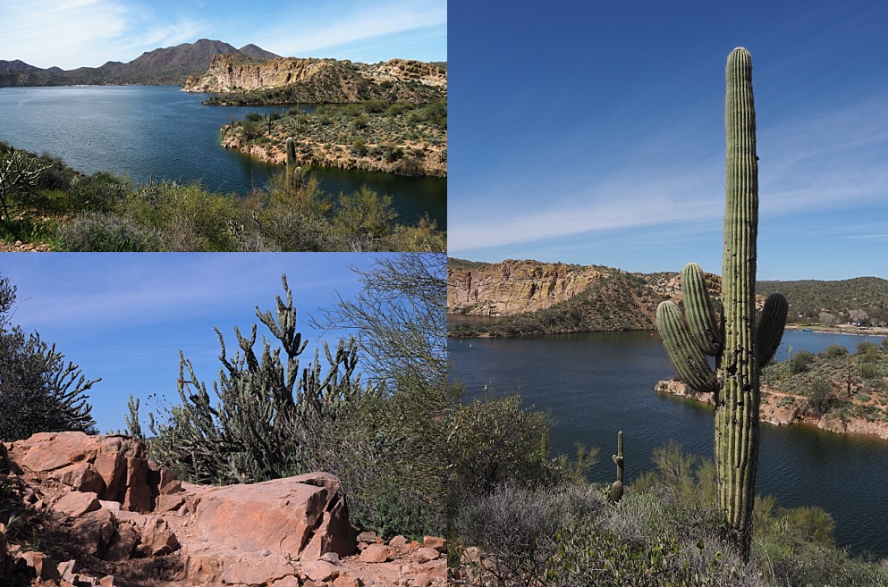 3-photo collage of vistas overlooking Saguaro Lake from Butcher Jones Trail