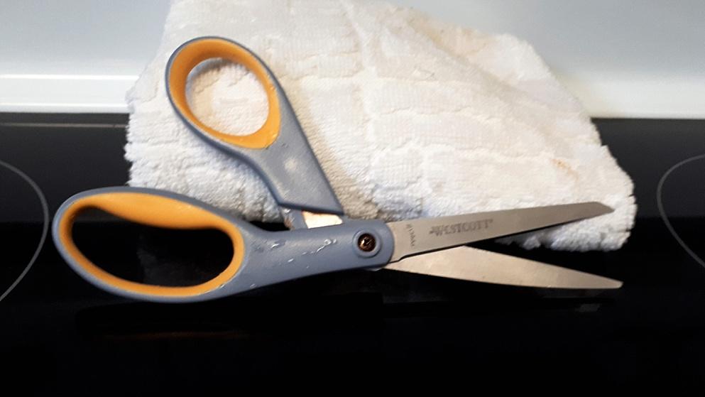 Pareidolia instance in kitchen scissors