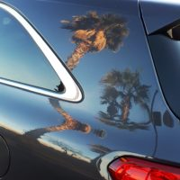 Reflection of two palm trees in car body