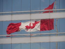 Canadian flag reflection, illustrating its aspect ratio
