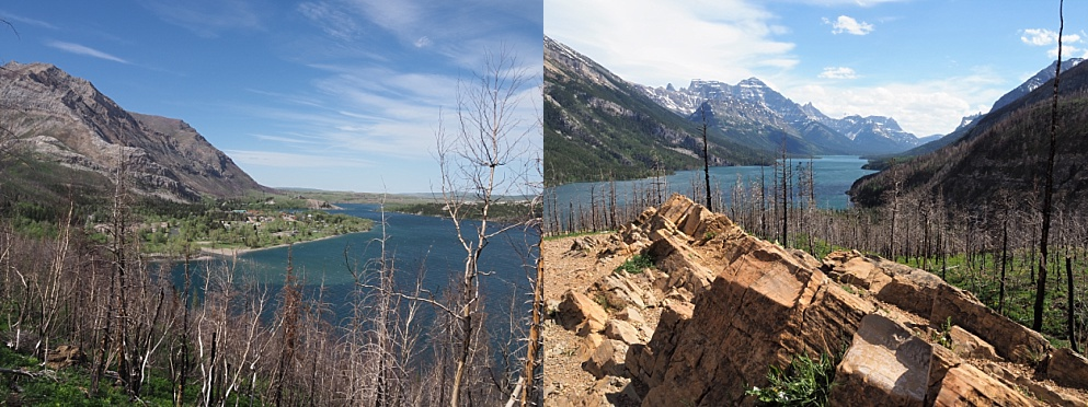 Waterton Lakes vistas after the Kenow wildfire