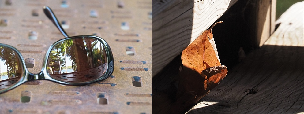 2-photo collage of leaf and sunglass reflection