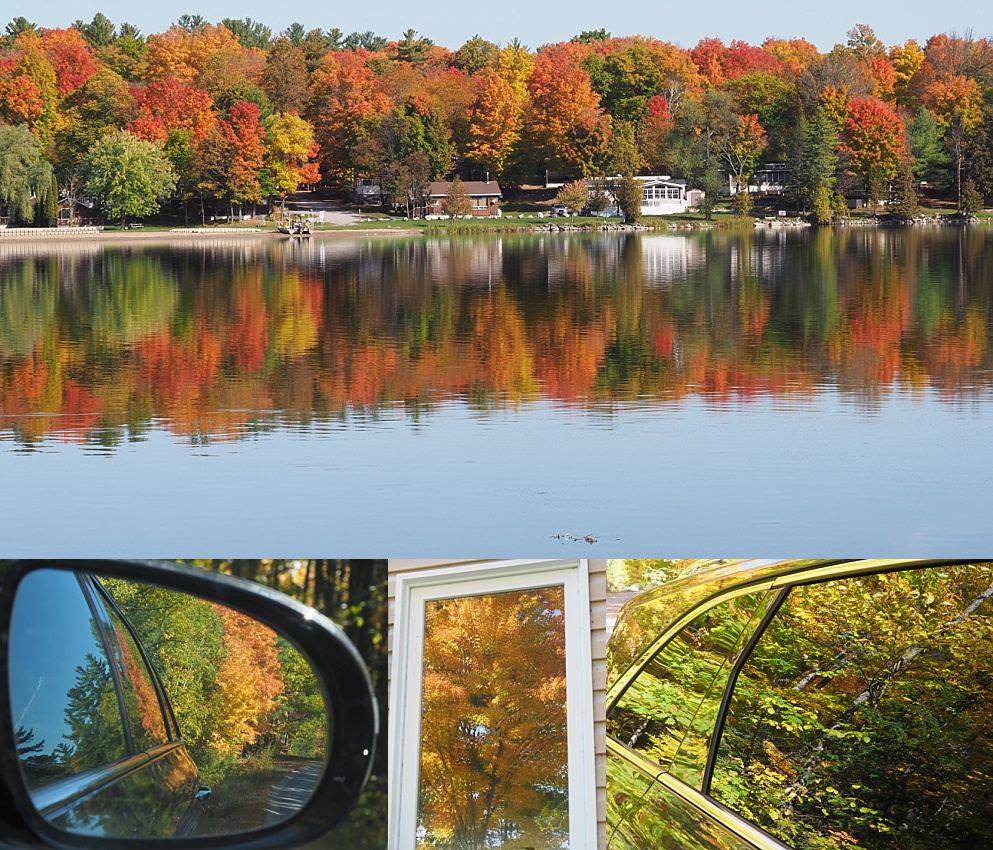 4-photo collage showing 2019 fall colours at White Lake ON