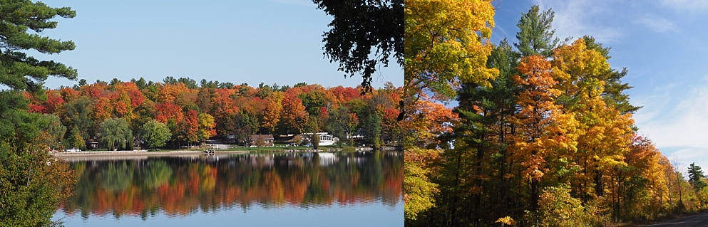 2-photo collage of fall leaves along lakeshore and country road