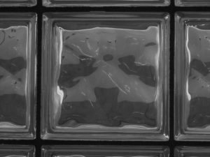 Panther face in glass blocks
