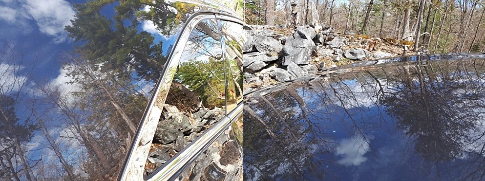 2-photo collage of forest reflection in car