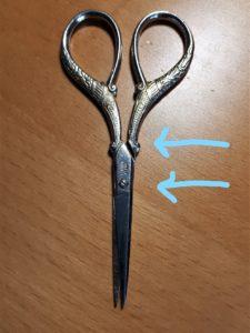 Accidental scissors face