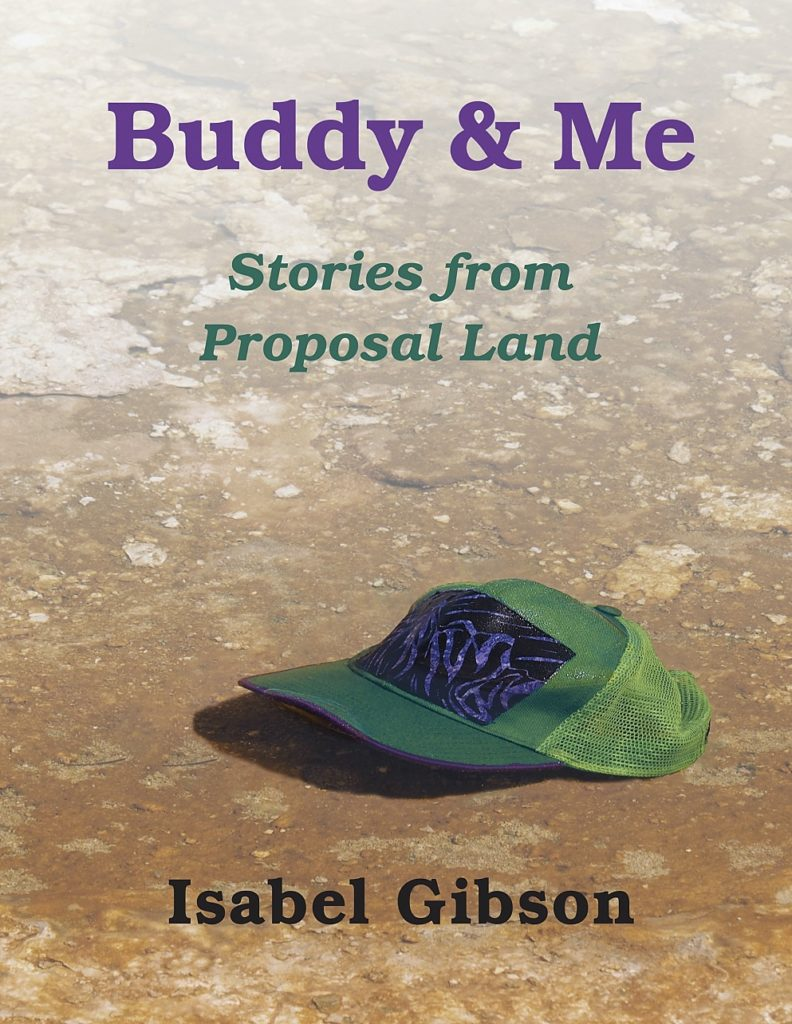 Cover from Isabel Gibson's memoirs